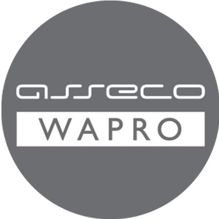 IMAG B2B - dla ASSECO WAPRO